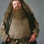 Hagrid - Good if you're fat, bearded and a Harry Potter fan... so that's like almost all of them...